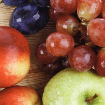 Fruit Wellness Program Plans
